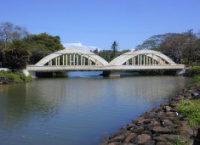 haleiwa bridget